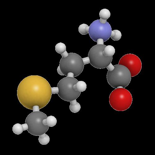 Fmoc Amino Acids